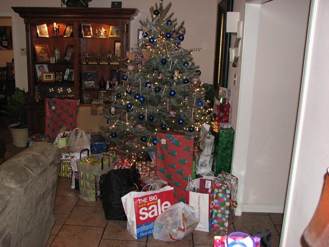 Christmas 2009  007