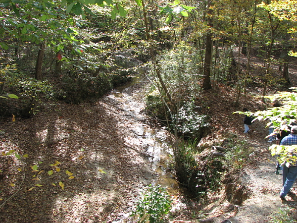Clark Creek Natural Area 16