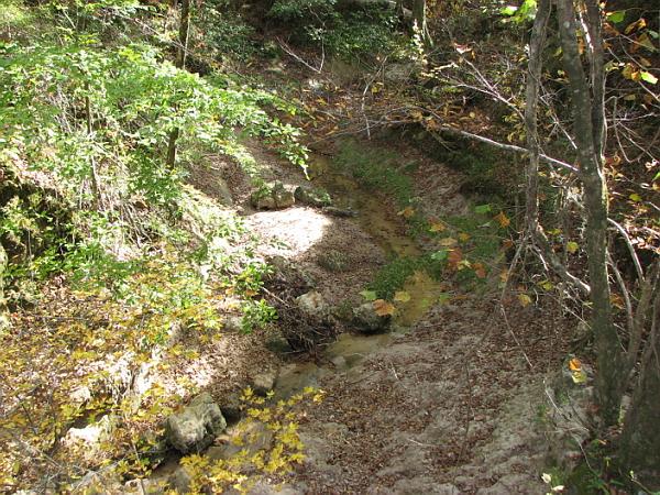 Clark Creek Natural Area 29
