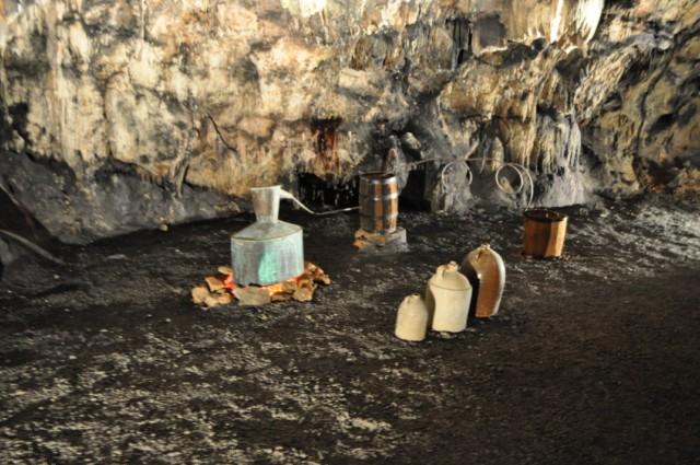 DeSoto Cavern Family Park 1-2011 26 [640x480]