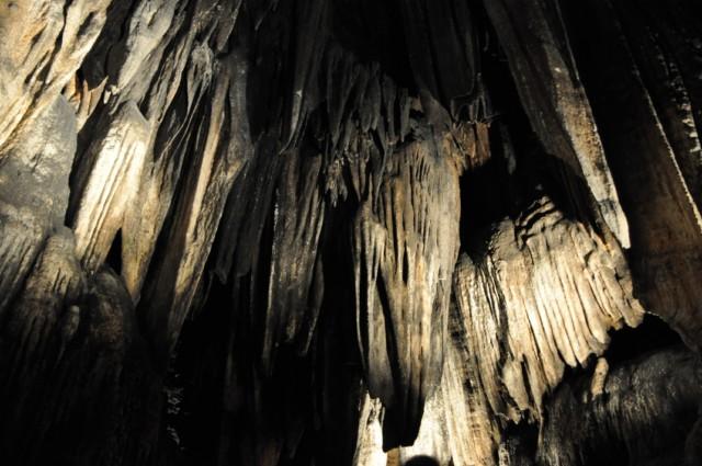DeSoto Cavern Family Park 1-2011 33 [640x480]