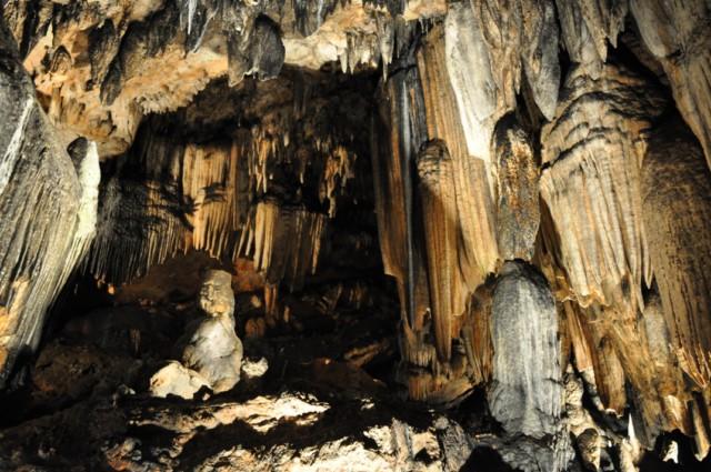 DeSoto Cavern Family Park 1-2011 38 [640x480]