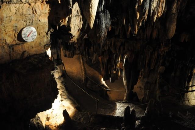 DeSoto Cavern Family Park 1-2011 41 [640x480]