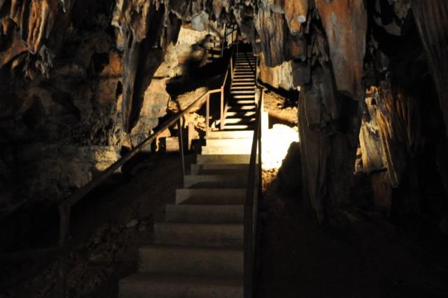 DeSoto Cavern Family Park 1-2011 51 [640x480]