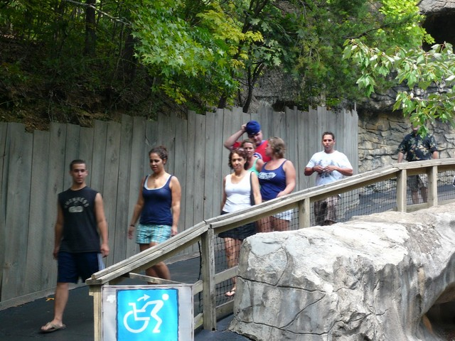 Dollywood 22
