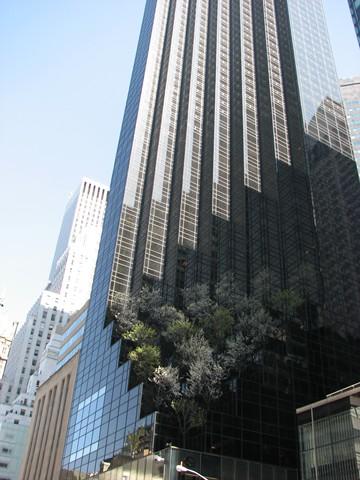 NYC 4-2010-0021 [640x480]