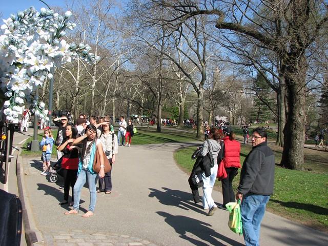 NYC 4-2010-0054 [640x480]