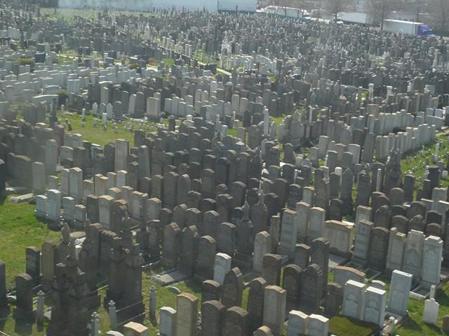 NYC 4-2010-0147 [640x480]