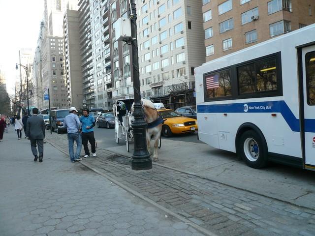 NYC 4-2010-0172 [640x480]