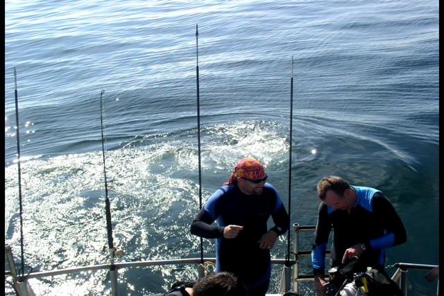 Pete Tide Check Out Dive 27
