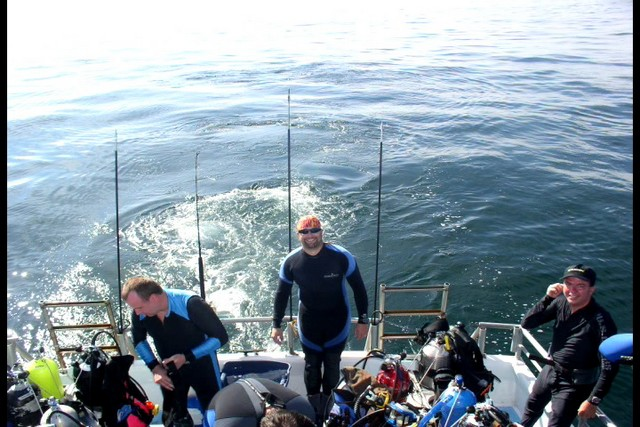 Pete Tide Check Out Dive 28