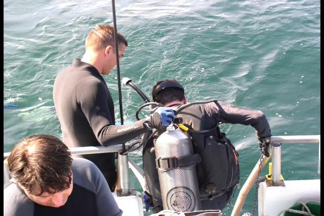 Pete Tide Check Out Dive 32