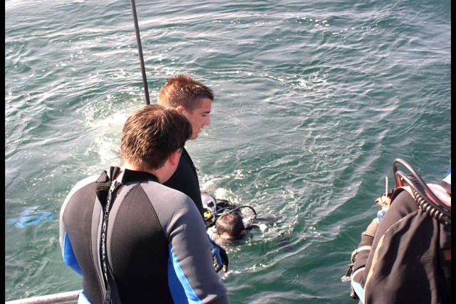Pete Tide Check Out Dive 33