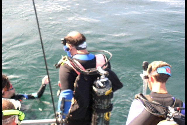 Pete Tide Check Out Dive 34