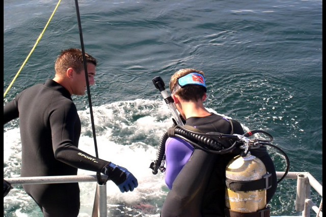 Pete Tide Check Out Dive 35