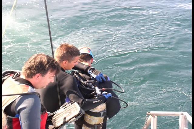 Pete Tide Check Out Dive 36