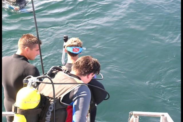 Pete Tide Check Out Dive 37