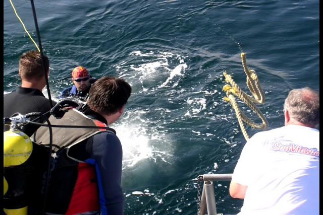 Pete Tide Check Out Dive 38