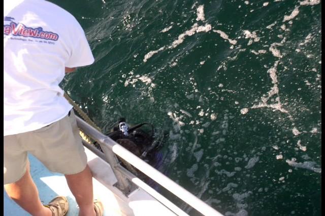 Pete Tide Check Out Dive 39