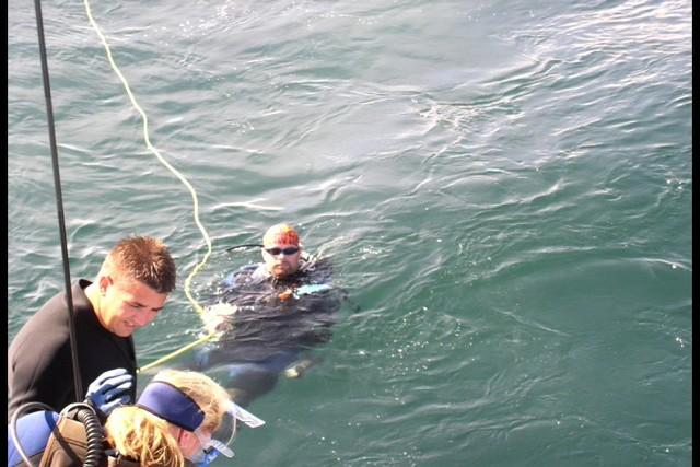 Pete Tide Check Out Dive 40
