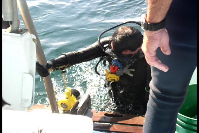 Pete Tide Check Out Dive 41