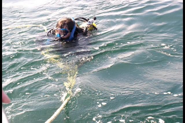 Pete Tide Check Out Dive 42