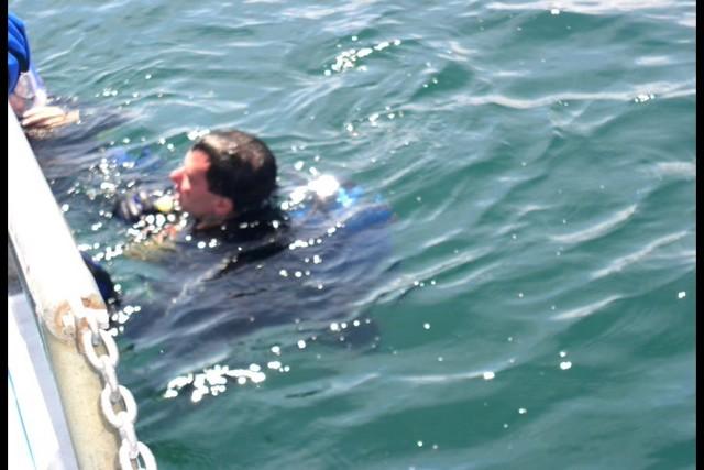 Pete Tide Check Out Dive 56