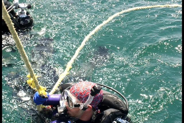 Pete Tide Check Out Dive 58