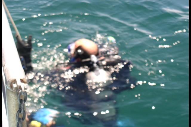 Pete Tide Check Out Dive 66