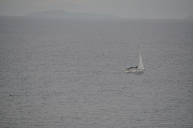 cruise 371