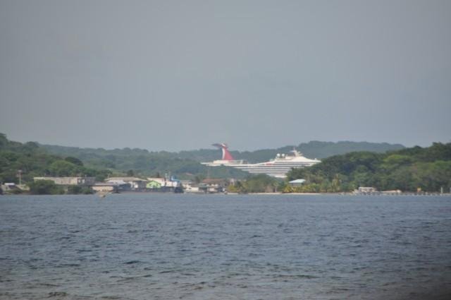 cruise 698