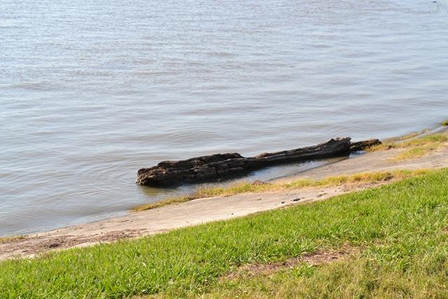 Bonnet-Carre-Spillway-5-18-2011-20