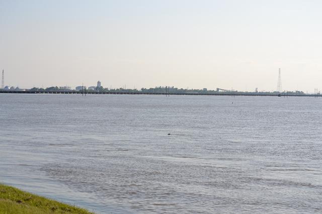 Bonnet-Carre-Spillway-5-18-2011-41