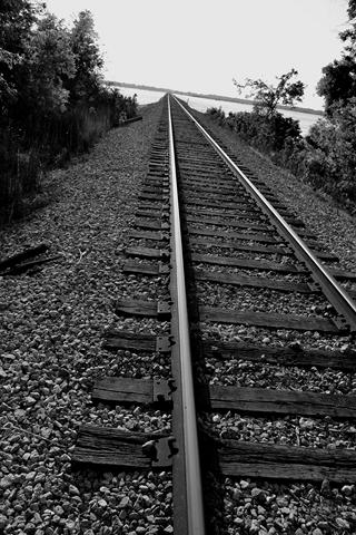Bonnet-Carre-Spillway-5-18-2011-48