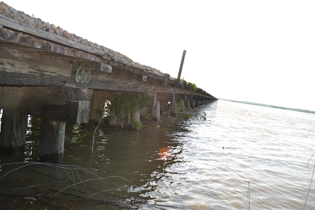 Bonnet-Carre-Spillway-5-18-2011-54
