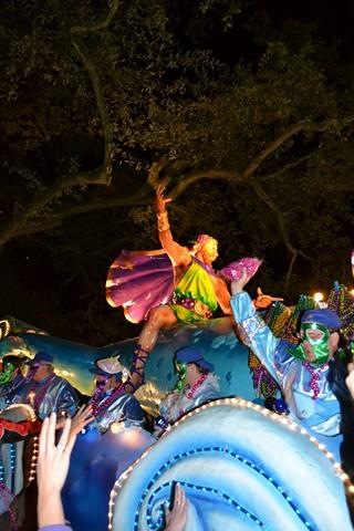 Mardi Gras 2012 (233)