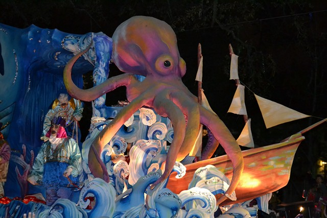 Mardi Gras 2012 (334)