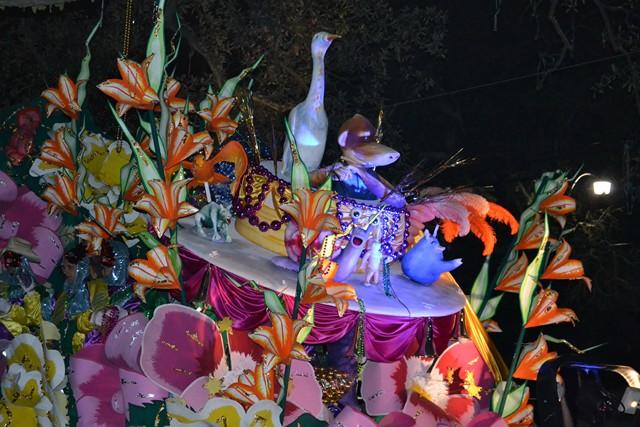 Mardi Gras 2012 (493)