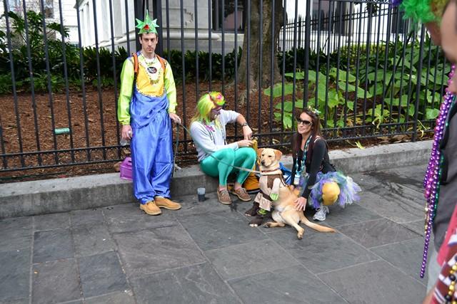 Mardi Gras 2012 (588)