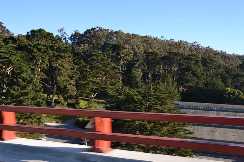 San Francisco Father-Son Trip 9-2013 (180) [800x600]