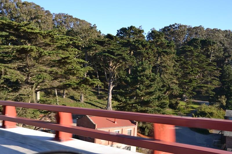 San Francisco Father-Son Trip 9-2013 (181) [800x600]