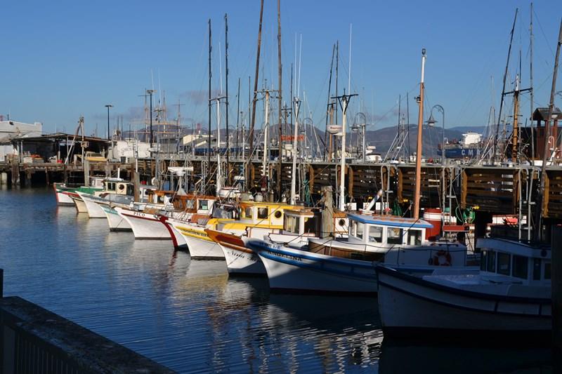 San Francisco Father-Son Trip 9-2013 (226) [800x600]