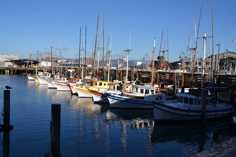 San Francisco Father-Son Trip 9-2013 (227) [800x600]
