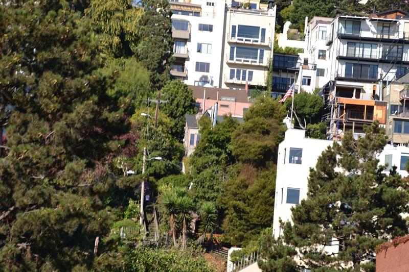 San Francisco Father-Son Trip 9-2013 (237) [800x600]
