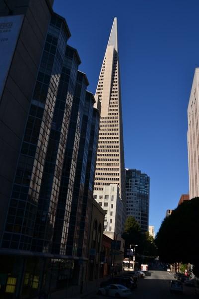 San Francisco Father-Son Trip 9-2013 (238) [800x600]
