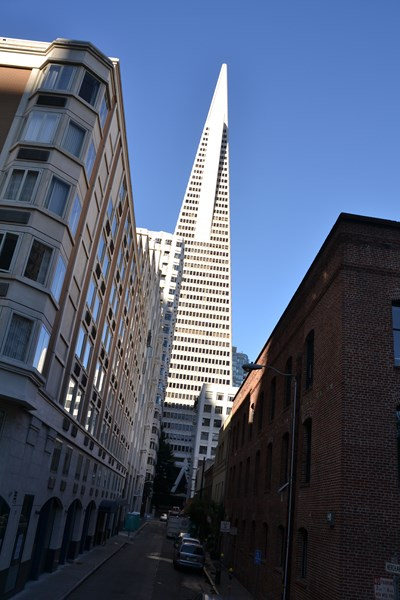 San Francisco Father-Son Trip 9-2013 (240) [800x600]