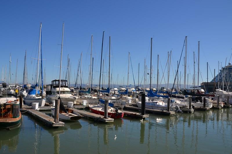 San Francisco Father-Son Trip 9-2013 (269) [800x600]