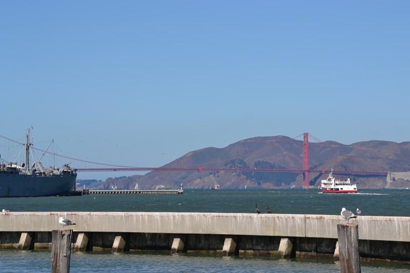 San Francisco Father-Son Trip 9-2013 (303) [800x600]