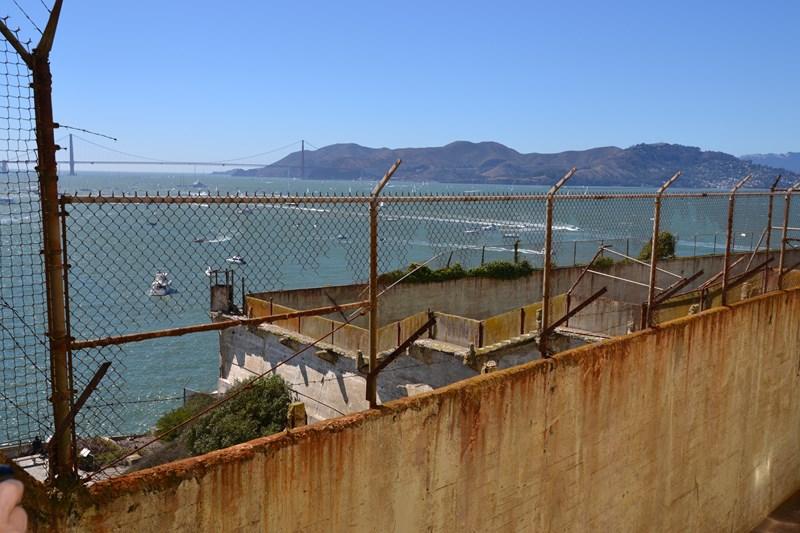 San Francisco Father-Son Trip 9-2013 (425) [800x600]