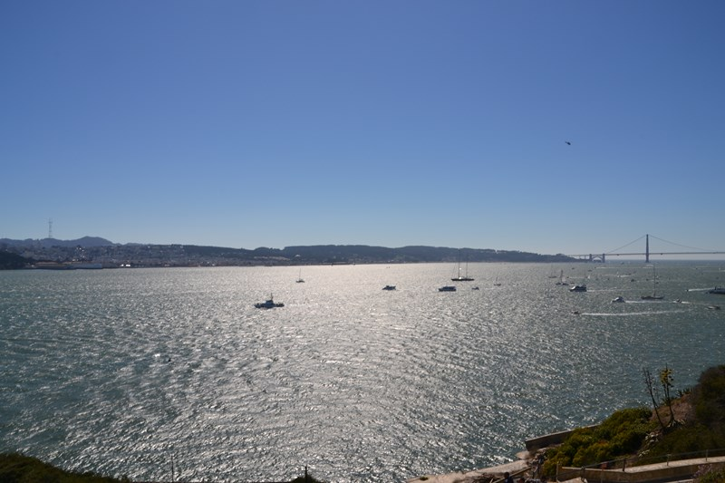 San Francisco Father-Son Trip 9-2013 (456) [800x600]